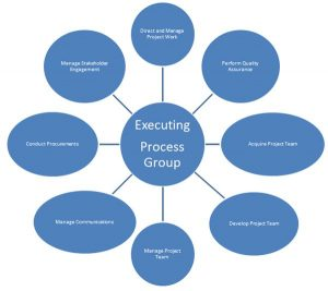 Executing Processes for PMP Exam