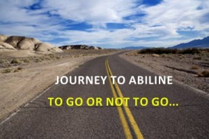 Journey To Abiline - Paradox for PMP Exam