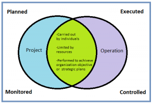 Different Between Project & Operations